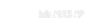dudum logo